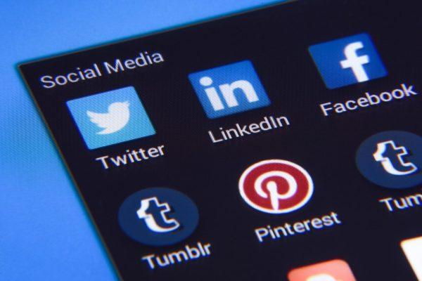 blue dog websites social media header designs for all five platforms